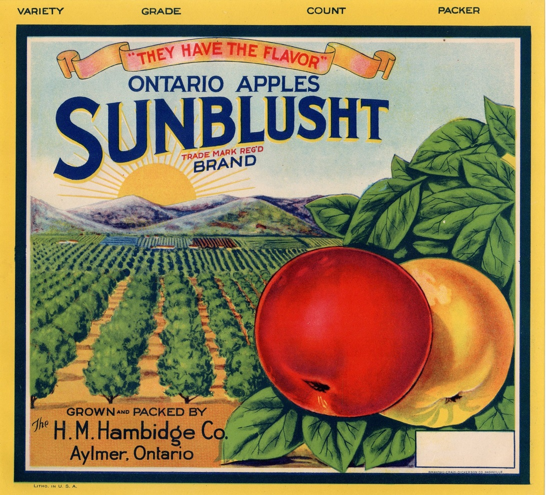 Sunblusht apple label of the H. M. Hambidge Co. Depicts a pair of apples with orchards in the background.